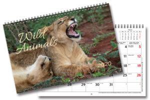 Väggkalender Wild Animals 2020 sälj och tjäna pengar till föreningen eller klassresan